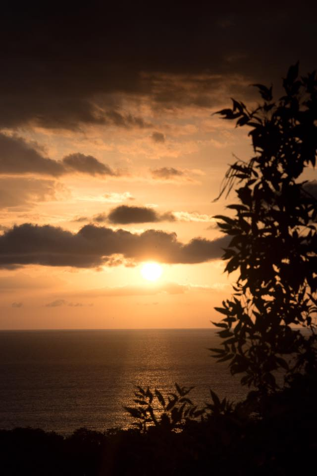 Gold sunset from the trees in Tamarindo, Costa Rica. hotographed by Samba to the Sea.