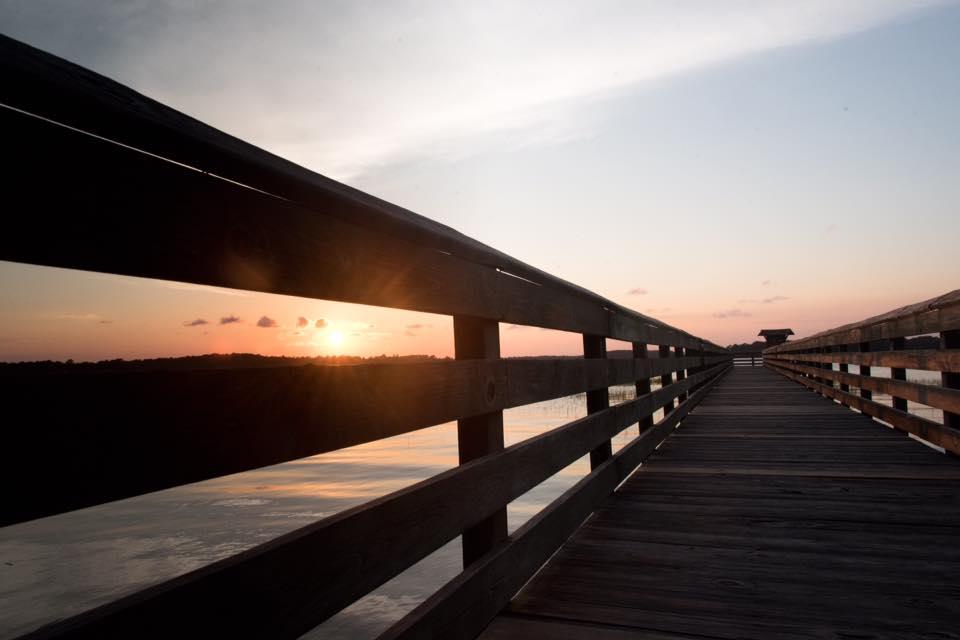 Sunset seen through the dock at UGA Aquarium in Savannah, Georgia.Photographed by Kristen M. Brown, Samba to the Sea.