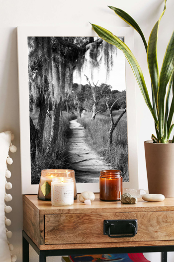 Black and white photo of path at Skidaway State Park in Savannah, Georgia. Fine art print by Kristen M. Brown, Samba to the Sea.